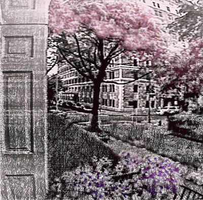 Photograph - Spring In The City by Susan Maxwell Schmidt