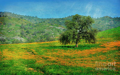 Photograph - Spring In The Country by Debby Pueschel