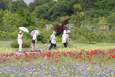 Photograph - Spring In The Garden by Masami Iida