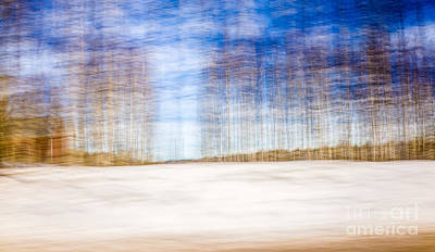 Photograph - Spring In The Slumberland Forest by Ismo Raisanen