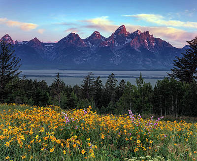 The Tetons Photograph - Spring In The Tetons by Leland D Howard