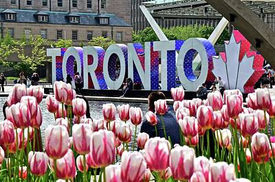 Photograph - Spring In Toronto by Frozen in Time Fine Art Photography