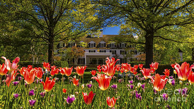 Photograph - Spring In Woodstock by Scenic Vermont Photography