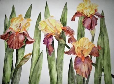 Painting - Spring Iris by Carol Grimes