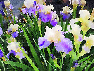 Photograph - Spring Irises by Chris Scroggins