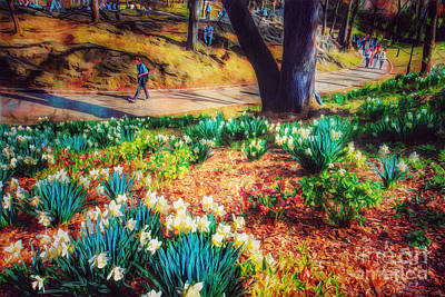 Photograph - Spring Is Busting Out All Over - Central Park New York by Miriam Danar