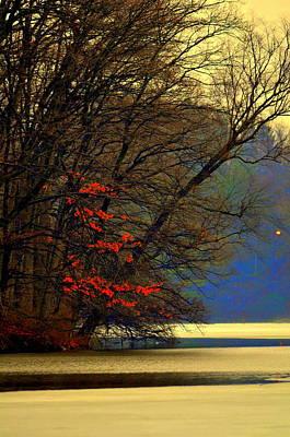Eagls Digital Art - Spring Is In The Air by Aron Chervin