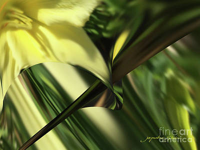 Digital Art - Spring by Jacqueline Shuler