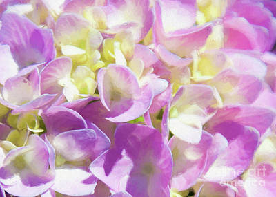 Photograph - Spring Lavender Hydrangea Painterly 1 by Andee Design
