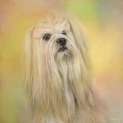 Photograph - Spring Lhasa Apso by Jai Johnson