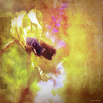 Digital Art - Spring Light by Jo-Anne Gazo-McKim