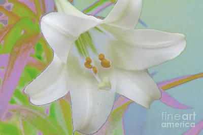 Spring Lily Pop Art Art Print by Susan  Lipschutz