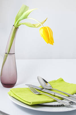 Photograph - Spring Meal by Patricia Hofmeester
