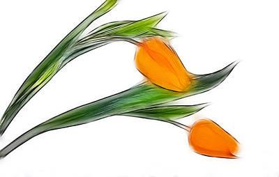 Spring Messenger Art Print