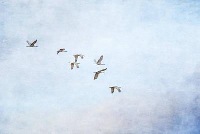 Spring Migration - Textured Art Print
