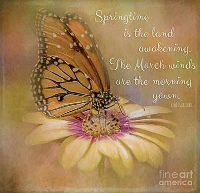 Photograph - Spring Monarch On A Daisy Mum by Teresa Wilson