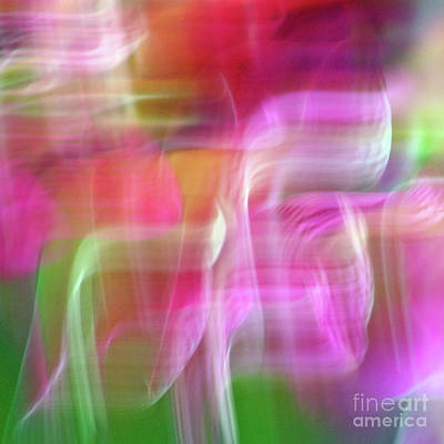 Photograph - Spring Moods Abstract Square by Karen Adams