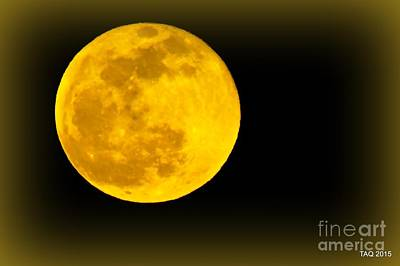 Photograph - Spring Moon Rising by Tami Quigley