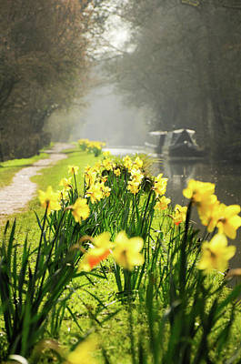 Photograph - Spring Morning by Geoff Smith
