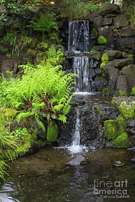 Photograph - Spring Morning Waterfall by Patricia Babbitt