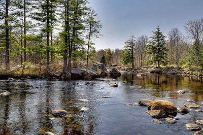 Art Print featuring the photograph Spring Near Moose River Road by David Patterson