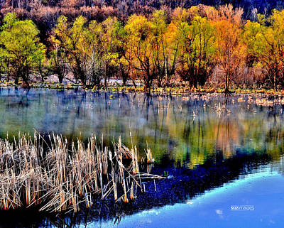 Photograph - Spring On Great River Road by Susie Loechler