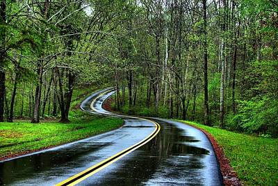Photograph - Spring On The Natchez Trace by Julie Riker Dant