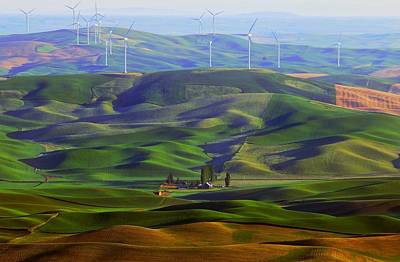 Photograph - Spring On The Palouse by Lynn Hopwood