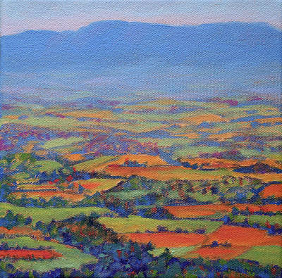 Painting - Spring Patchwork 1 by Bonnie Mason
