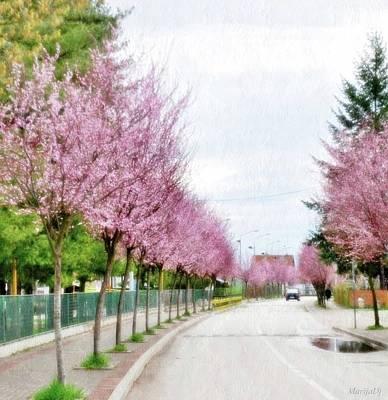Photograph - Spring Path by Marija Djedovic