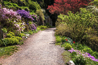Photograph - Spring Path. Old Rock Alpine Garden At Pruhonice Park 1 by Jenny Rainbow