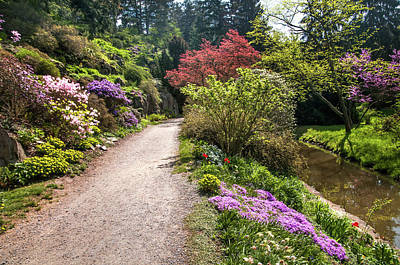Photograph - Spring Path. Old Rock Alpine Garden At Pruhonice Park 2 by Jenny Rainbow