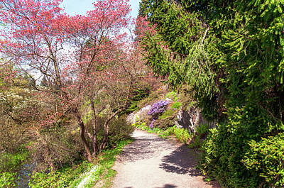 Photograph - Spring Path. Old Rock Alpine Garden At Pruhonice Park 3 by Jenny Rainbow