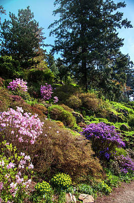 Photograph - Spring Path. Old Rock Alpine Garden At Pruhonice Park 4 by Jenny Rainbow