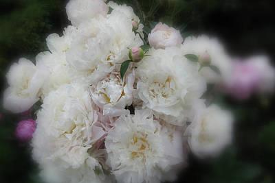 Digital Art - Spring Peonies by Janet Duffey