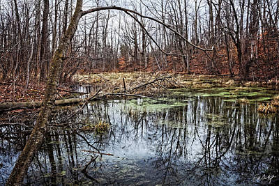 Spring Pond Original by Phill Doherty