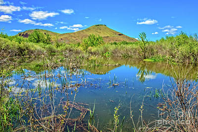 Photograph - Spring Pond by Robert Bales