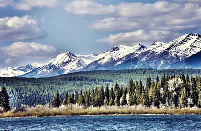 Montana Landscapes Photograph - Spring Radiance by Janie Johnson