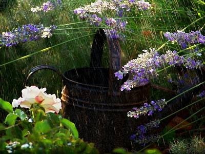 Photograph - Spring Rain by Marika Evanson