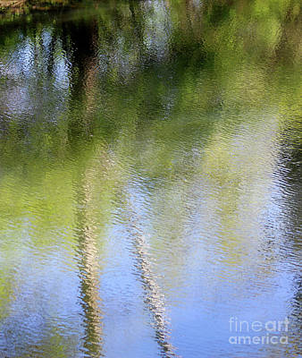 Photograph - Spring Reflection Abstract by Karen Adams