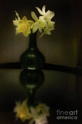 Photograph - Spring Reflection by John Anderson