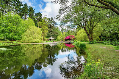 Photograph - Spring Lake Reflections by Adrian Evans
