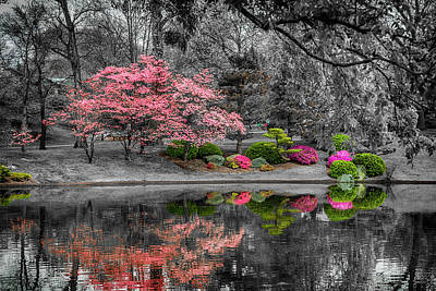 Photograph - Spring Reflections At The Garden 7r2_dsc6595_04172017 by Greg Kluempers