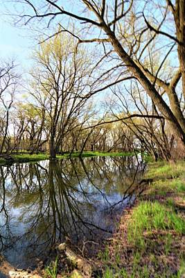 Photograph - Spring Reflections by Bonfire Photography