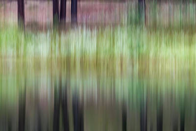 Photograph - Spring Reflections by Deborah Hughes