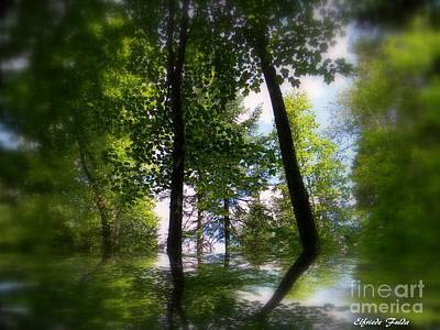 Photograph - Spring Reflections by Elfriede Fulda