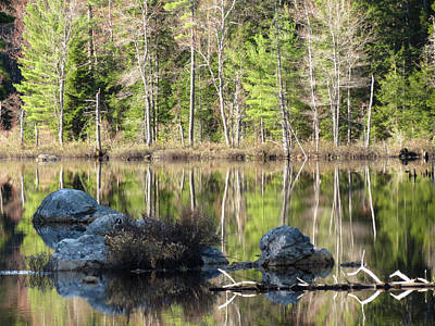 Photograph - Spring Reflections by MTBobbins Photography