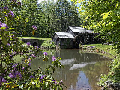 Photograph - Spring Reflections Of An Ancient Mill by Brenda Kean
