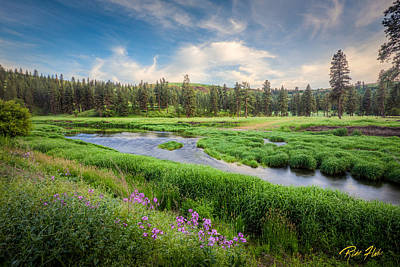 Photograph - Spring River Valley by Rikk Flohr