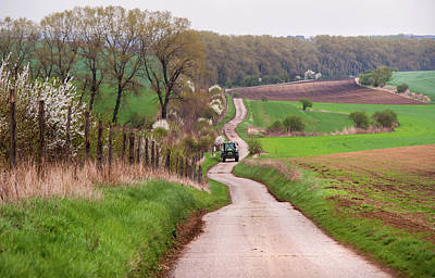 Photograph - Spring Road. South Moravia by Jenny Rainbow
